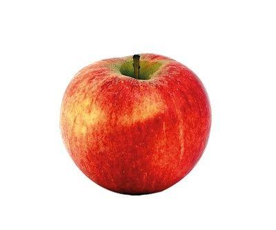VENTE DIRECTE ET EN LIGNE DE FRUITS ET LÉGUMES DE SAISON