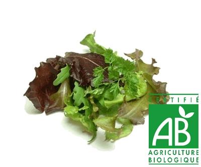 au marché fleury - jeunes pousses agriculture biologique