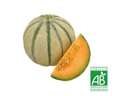 AU MARCHE FLEURY - VENTE EN LIGNE DE FRUITS ET LEGUMES - melon bio