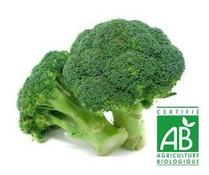 AU MARCHE FLEURY - VENTE EN LIGNE DE FRUITS ET LEGUMES - brocoli bio