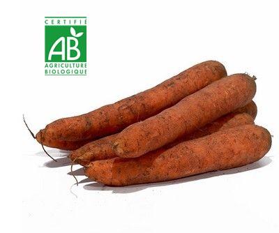 AU MARCHE FLEURY - VENTE EN LIGNE DE FRUITS ET LEGUMES - carottes bio
