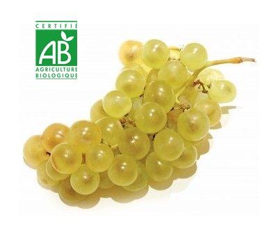 825822b9746 Raisin blanc 500 g Bio
